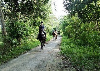 Usahawan Negeri Sembilan Pelbagai Aktiviti Berkuda Di