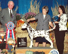 Argus Goes Best In Show In Tennessee