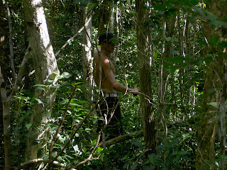 Los Arboles Tulum A Mayan Jungle Hideaway