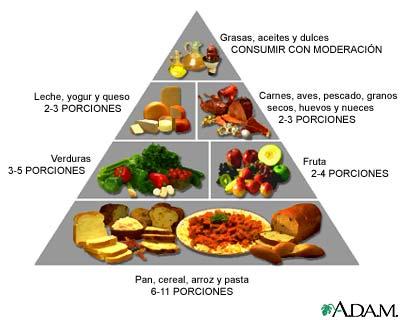 En que alimentos se encuentra el carbono hidrogeno oxigeno y nitrogeno