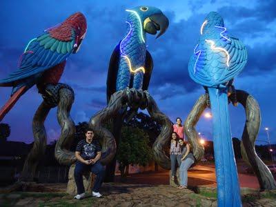 Praça das Araras - Campo Grande - MS 1af9fd3741fec