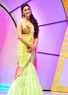 Shreya Sharan @ South Scope Cine Awards
