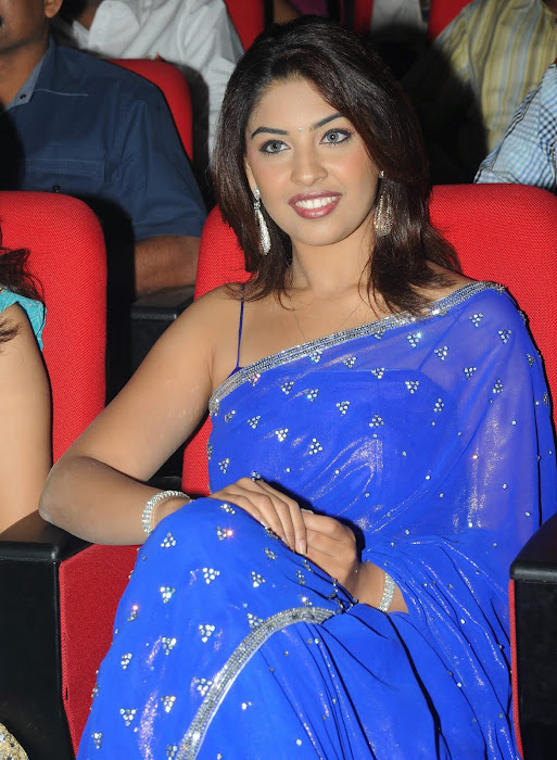 richa gangopadhyay new n spicy in blue saree photo gallery