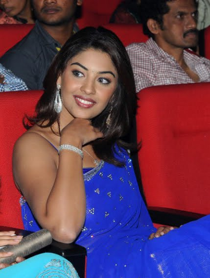 richa gangopadhyay new n spicy in blue saree