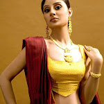Bhanu Sri Mehra Latest Hot Photoshoot Stillls