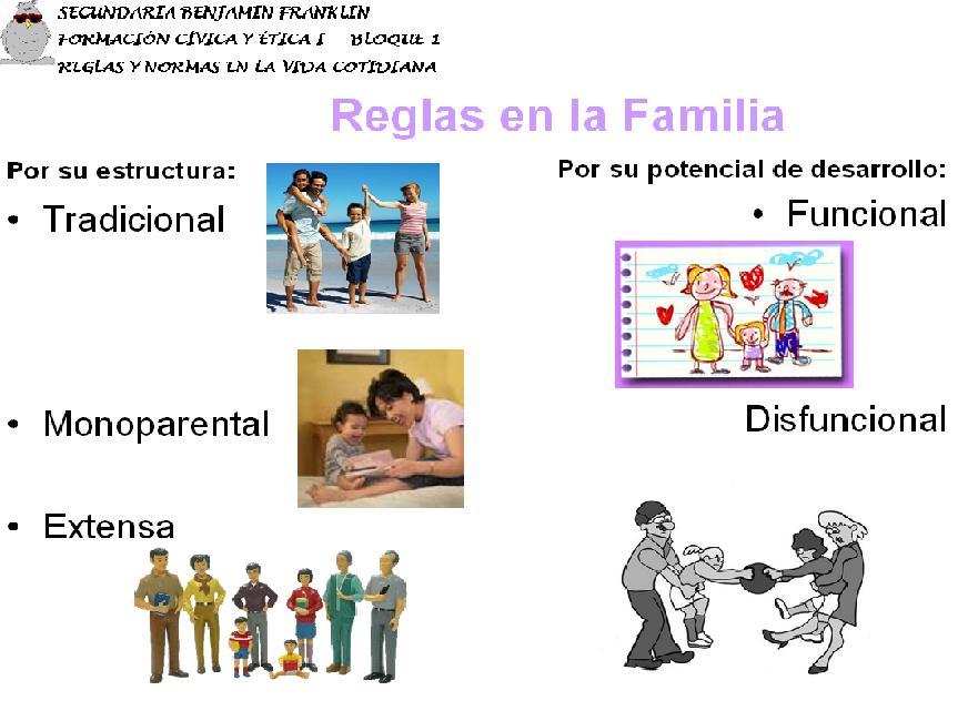 ESTRUCTURA DE LA FAMILIA FAMILIA
