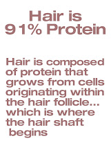 Hair Is Protein
