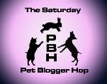 Blog Hop Saturday