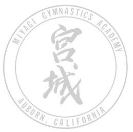 miyagi gymnastics meet