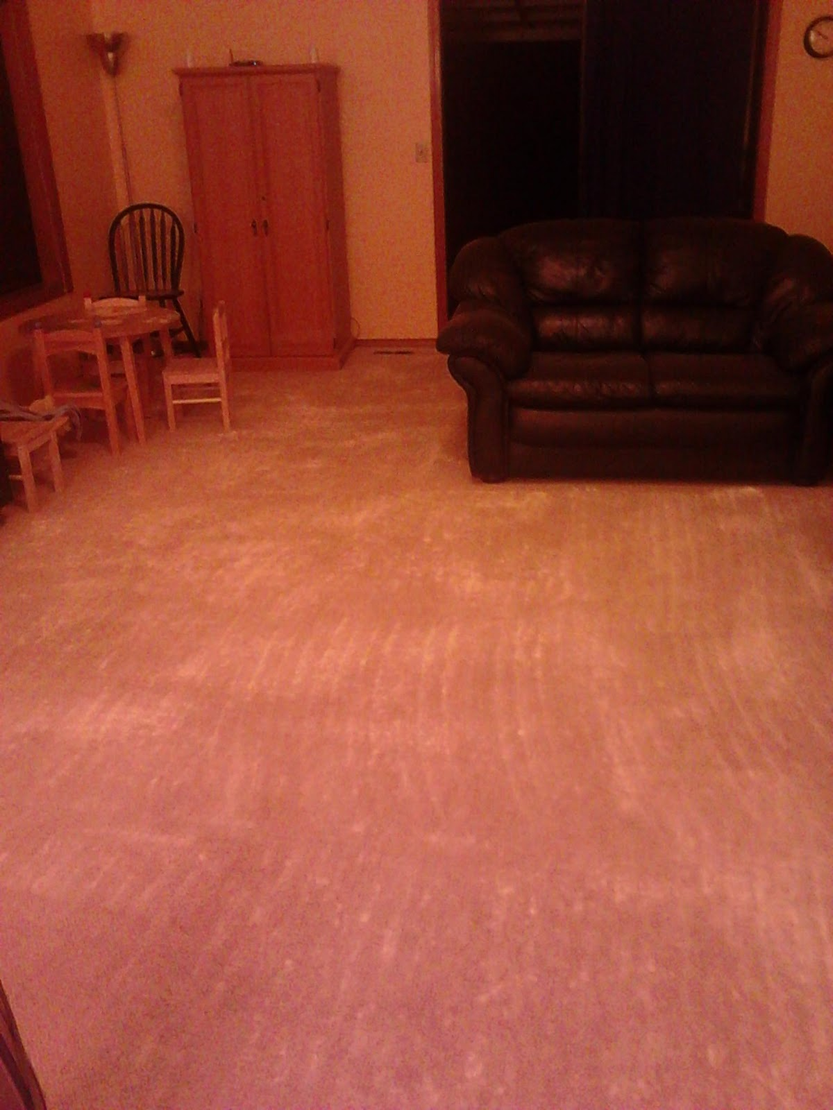 How Long To Leave Diatomaceous Earth On Carpet For Fleas