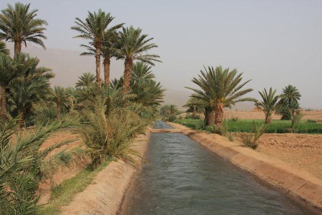AGRICULTURA DE OÁSIS - A agricultura tradicional em Marrocos