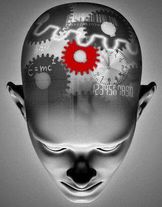 kognitiva egenskaper hos människan