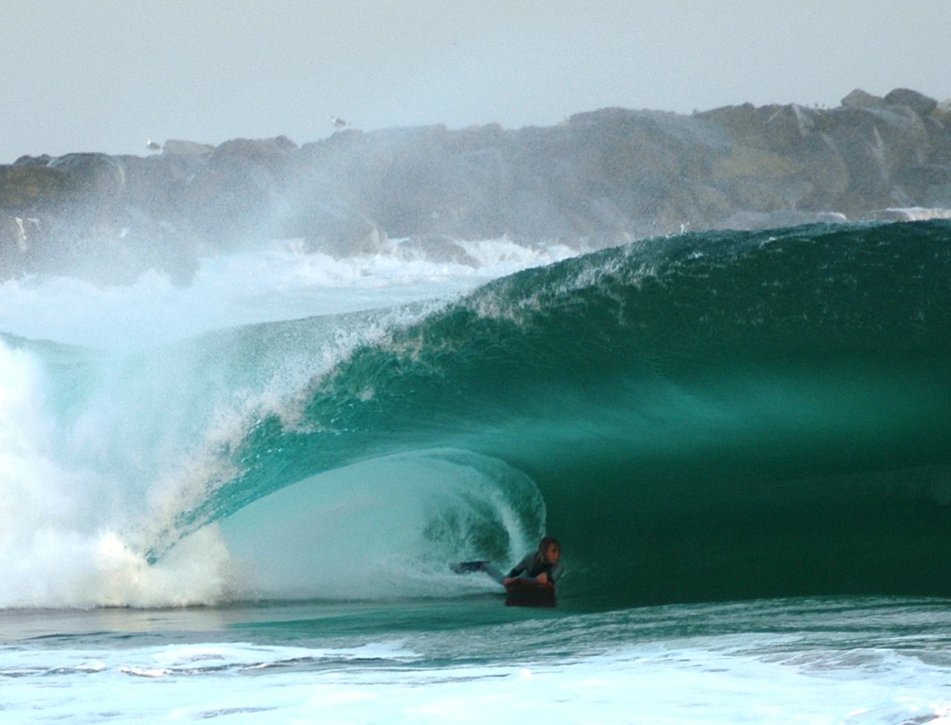 maui wave report