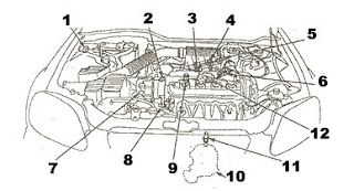 Car Wiring Diagrams: Honda Civic Parts | Engines (DOHC)