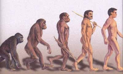 The progression of man - from blogspot.com
