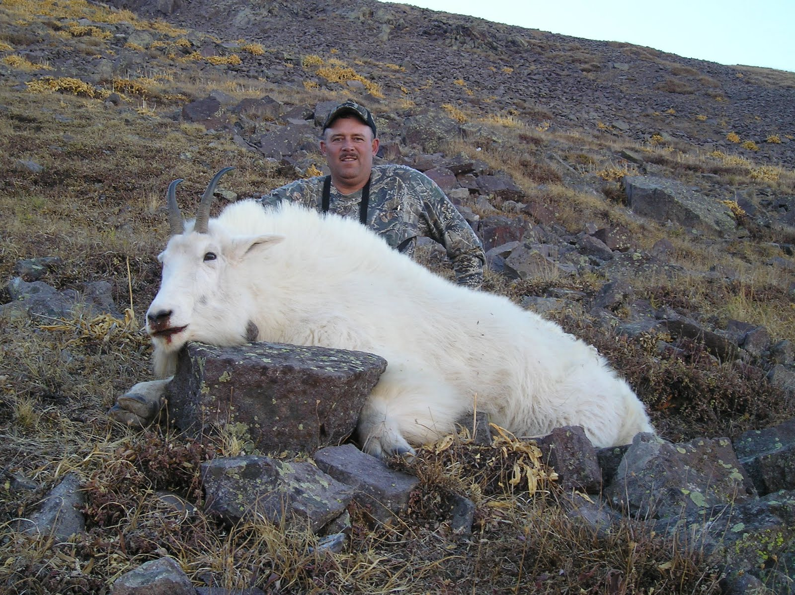 Bryan Carter Hunting Utah Mountain Goat Hunt