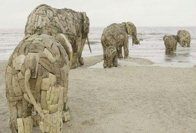 http://2.bp.blogspot.com/_dfyWISO77Xk/SrTjzIabu3I/AAAAAAAAC-Q/MyzkzrhTU1w/s400/andries_botha_elephants.jpg