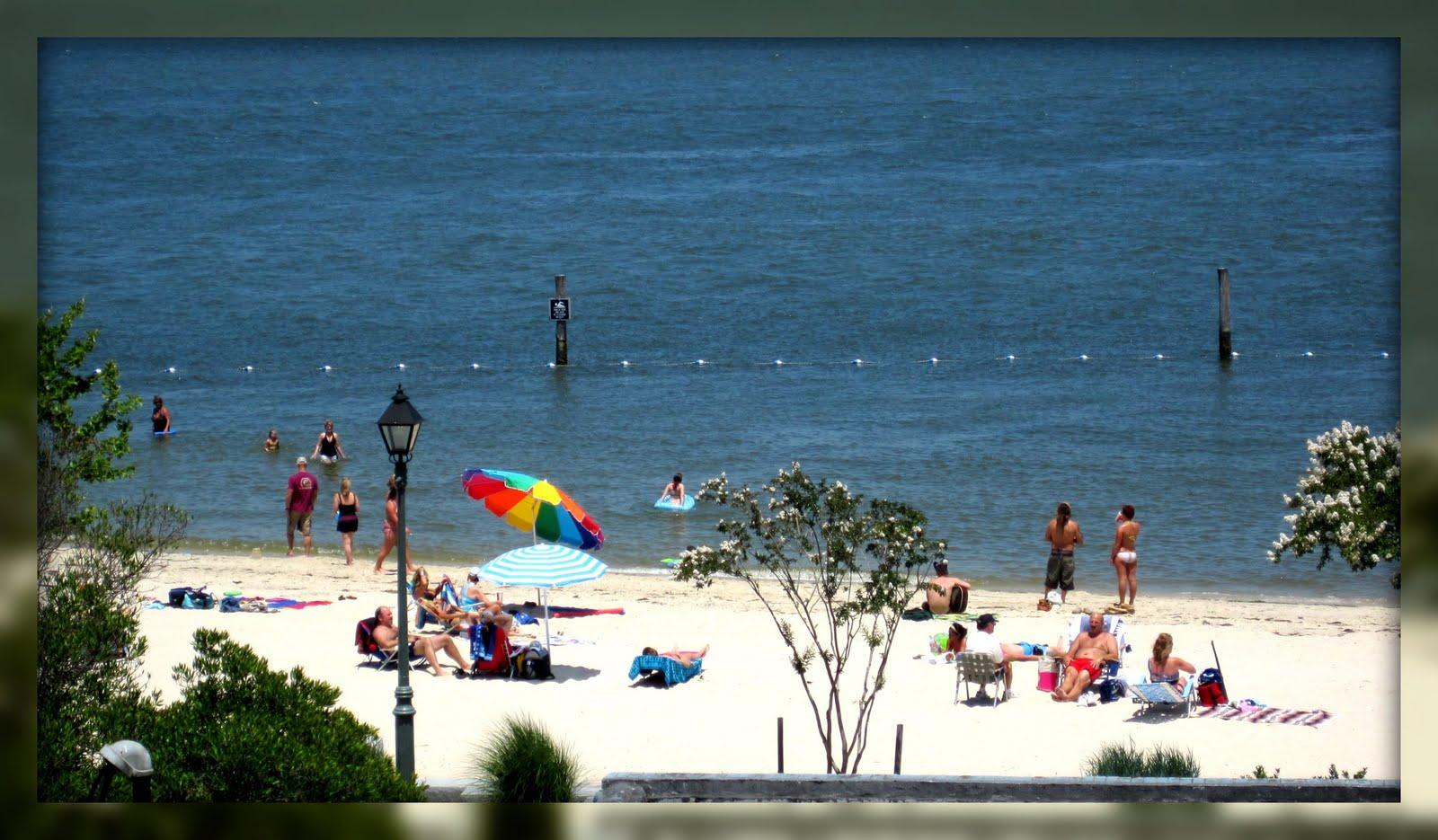Williamsburg's Secret Beach | Scouting NY |Williamsburg Beach