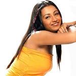 Trisha   South Indian Celebrity Photos