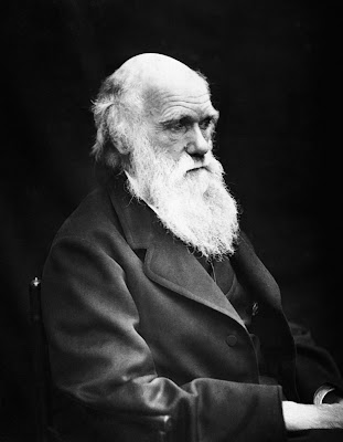 a biography of charles darwin an english naturalist Joshua lim charles darwin charles darwin: darwin was an english naturalist who lived in the 1800s while sailing around the galapagos islands, he observed a wide variety of species, varying from island to island.