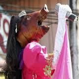 Roasted Pig Festival