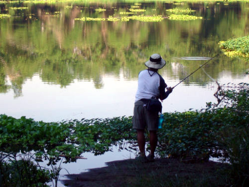 man fishing in the pond