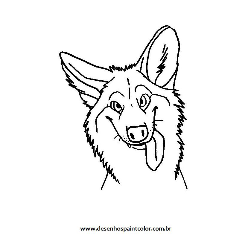 Desenho De Lobo Guara Para Imprimir E Colorir Desenhos Infantis