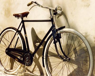 Biciclette Taurus La Taurus Modello 19
