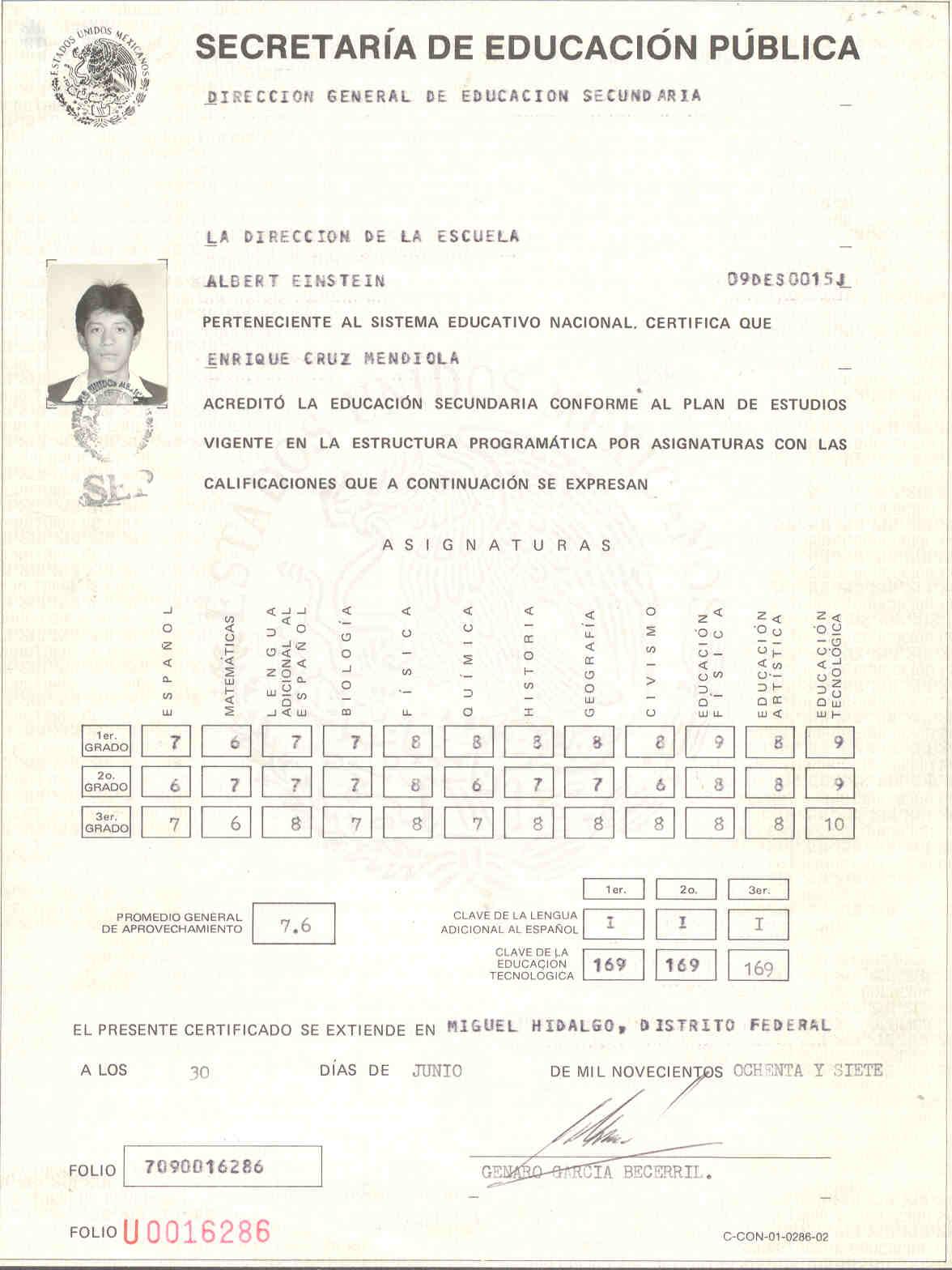 Checocarreraweb Curriculum Vitae