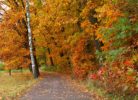 health news, use Chinese herbs and Chinese medicine as the seasons change
