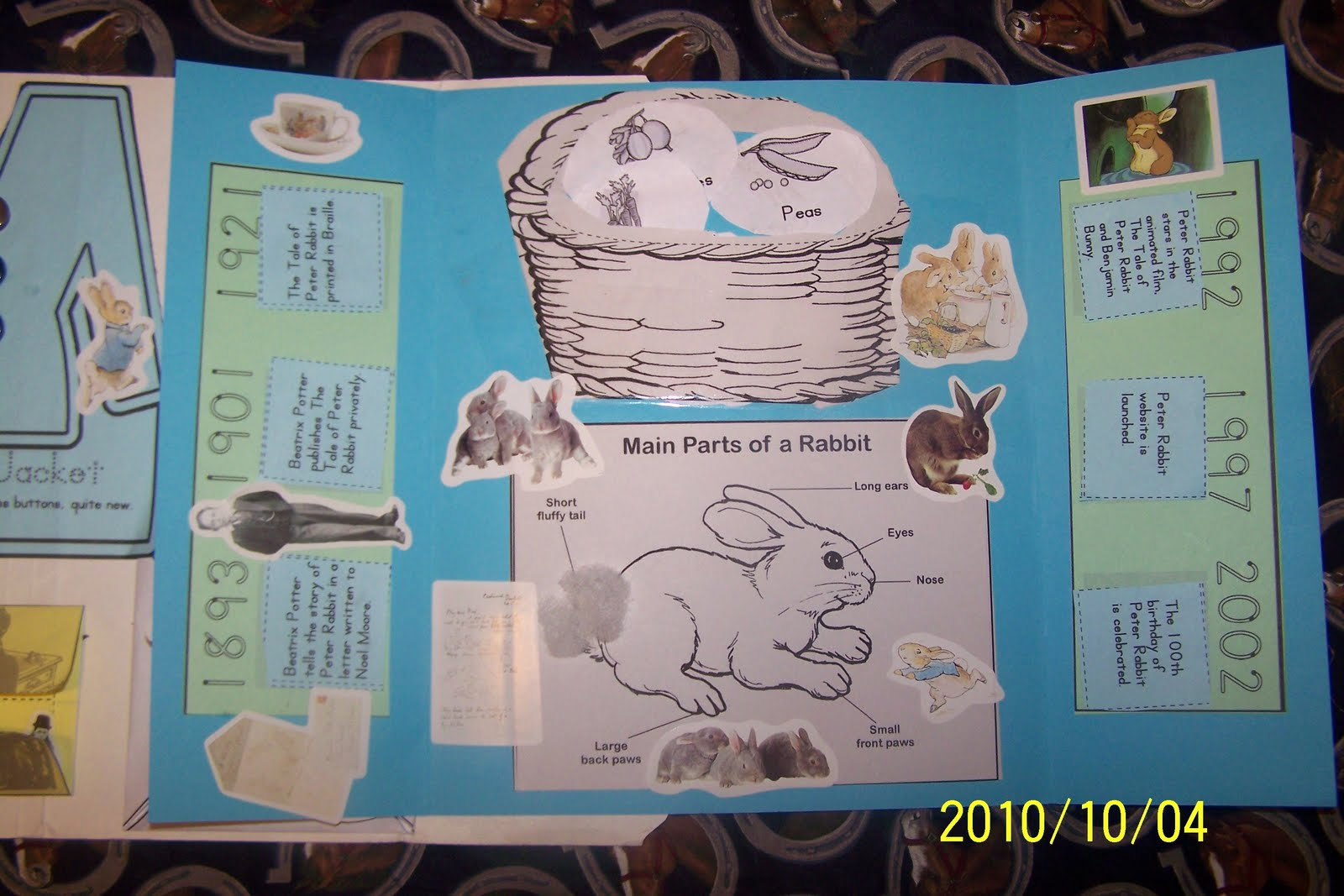 My Father S Sheep Peter Rabbit Lapbook Hands Of A Child