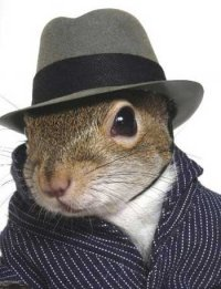 Send rumors and stories to The Squirrel!