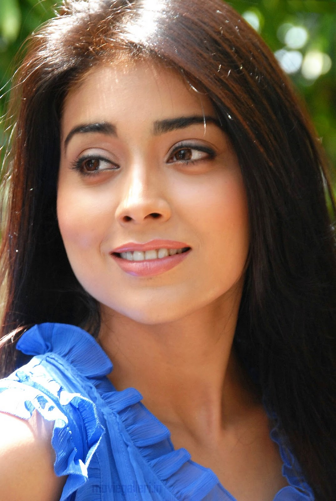 Hot Bollywood Actress Wallpapers  Videos Shriya Saran-6437