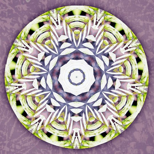 boundless giving mandala