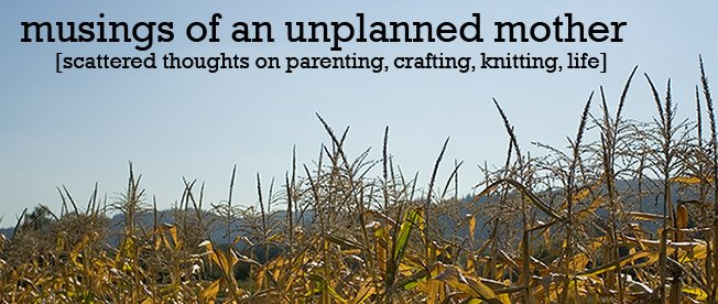 musings of an unplanned mother