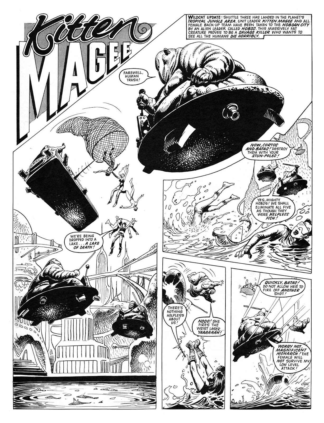 Wildcat 11 Page 2