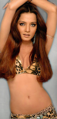 Celina Jaitley 3  Hot-Celebs-Wallpapers-6630