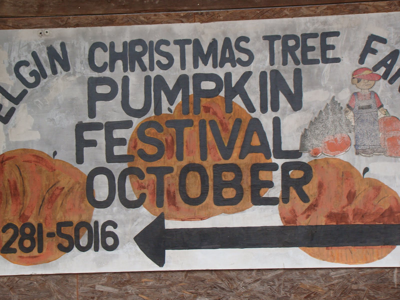 Elgin Christmas Tree Farm.Unexpectedly Expecting Baby Ava S Second Pumpkin Patch