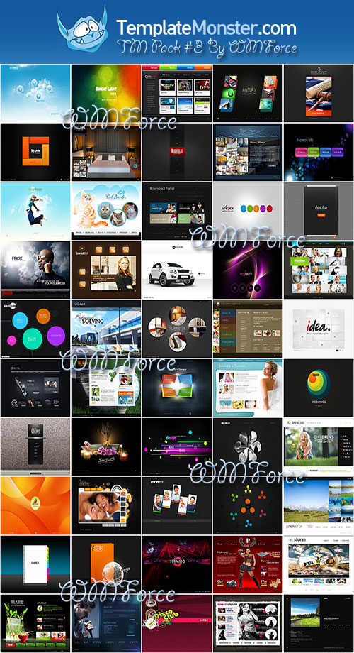 Template Monster Flash Templates Pack #3 By WMForce Team