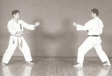 shotokan karate odyssey sparring crazy monkey defense vs shotokan