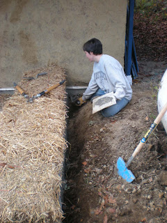 life under a blue roof straw bale coop part two an essay in photos life under a blue roof