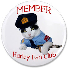Join Harley's Fan Club