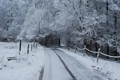 Allergidoktorn kan ta emot i vinter