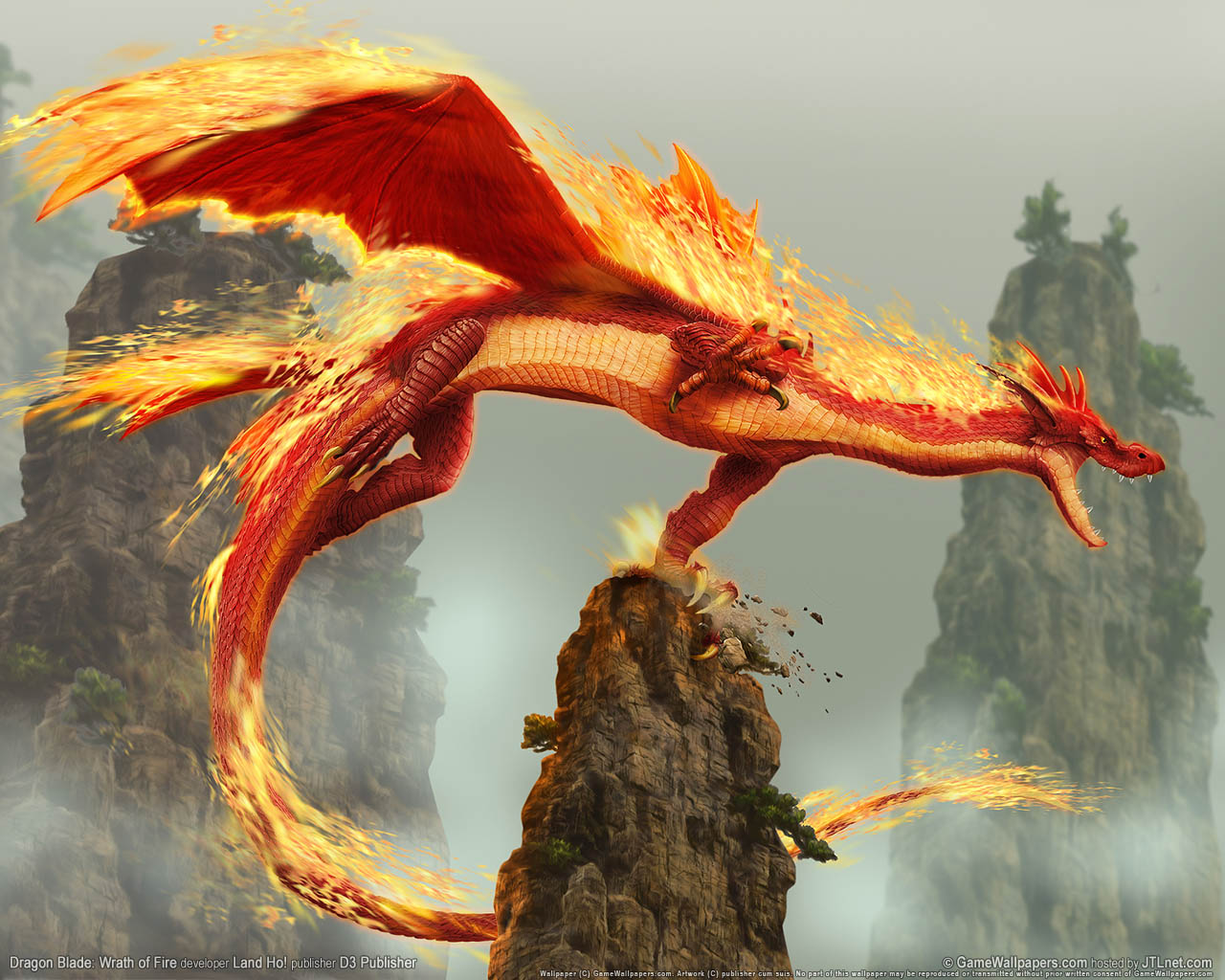 Real Fire Dragon