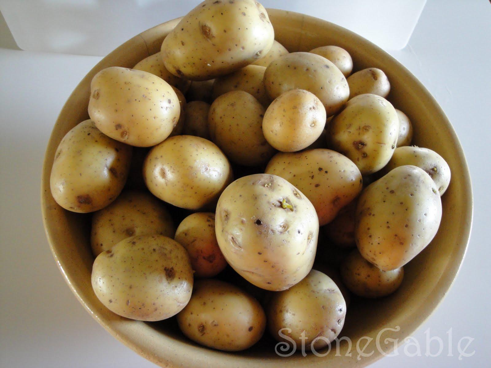 Make Ahead Mashed Potatoes - StoneGable - photo#33