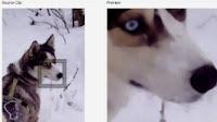 Ingrandire foto e immagini, aumentare dimensione e risoluzione