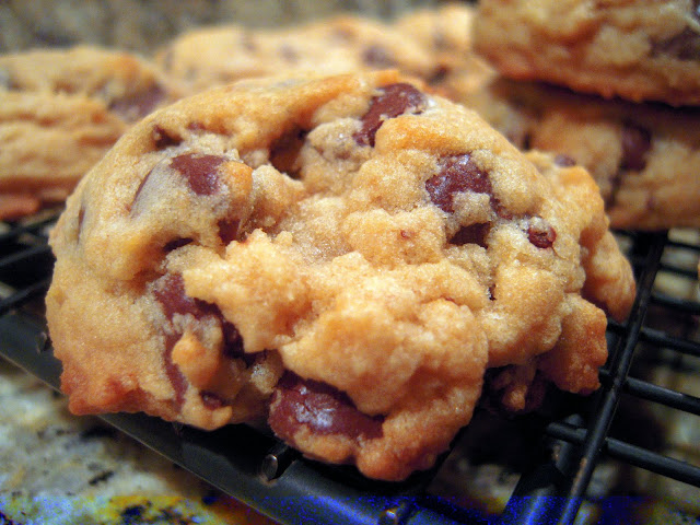 Bisquick Chocolate Chip Cookies - the last chocolate chip cookie recipe you will ever need!! Seriously DELICIOUS!!! Bisquick, brown sugar, vanilla, egg, butter, chocolate chips and nuts. These are the MOST requested cookie I make. SO good! #bisquick #chocolatechipcookie #cookierecipe