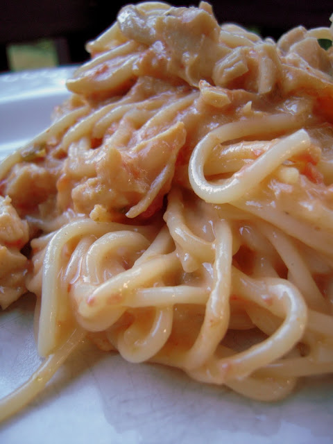 Rotel Chicken Spaghetti - chicken, cream of chicken soup, rotel, velveeta, spaghetti - I can not get enough of this stuff! We make it at least once a month! Also makes a great freezer meal.