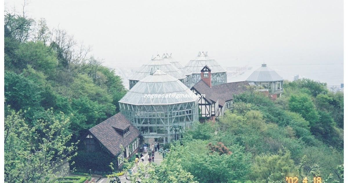 KUMMY樂悠遊: [花園]布引香草花園
