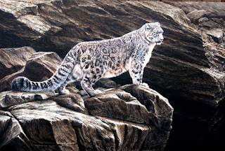 Snow Leopard by Alan M Hunt